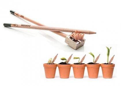 matita che si pianta