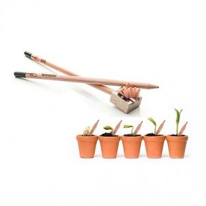matita che sia pianta